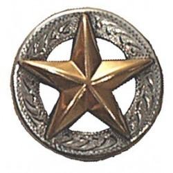 2526 Kultainen tähti